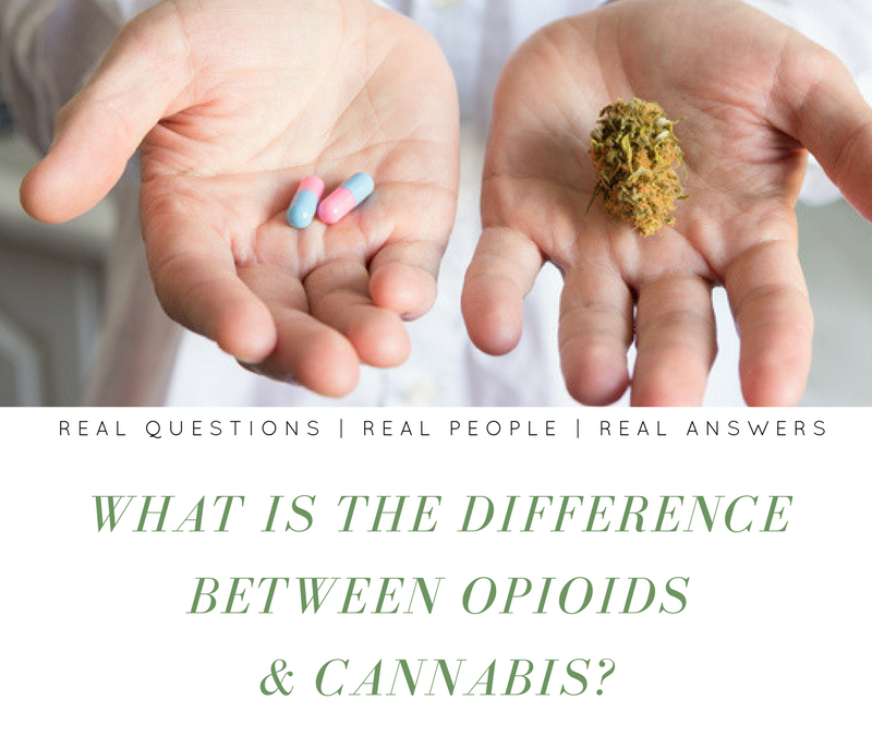 What is the difference between Opioids & Cannabis?